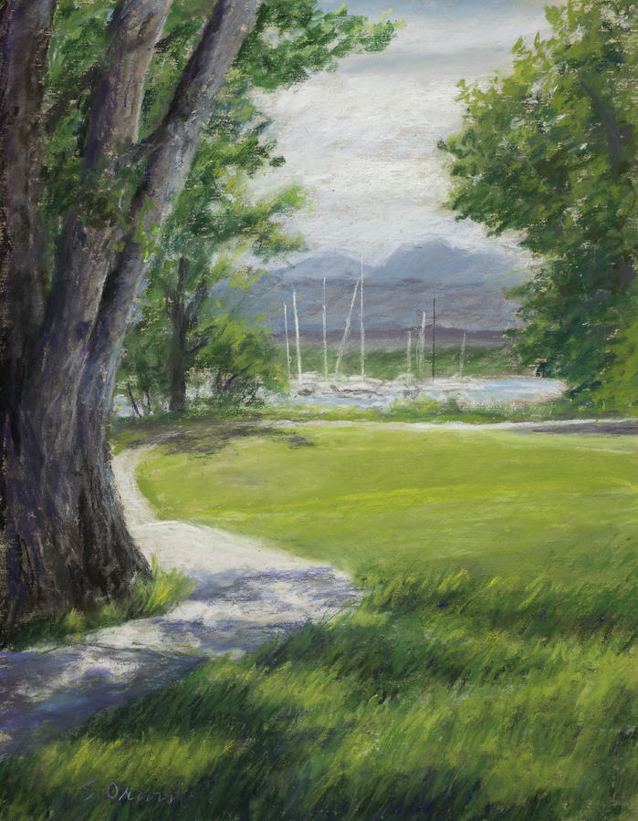 A Shadowed  Colorado Bike Trail Winds Along A Lake With Marina Pastel - Blke Trail 1 by Susan Driver