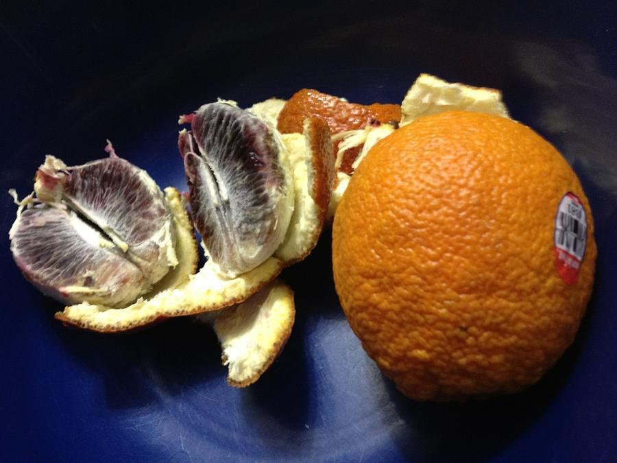 Blood Mandarin Photograph