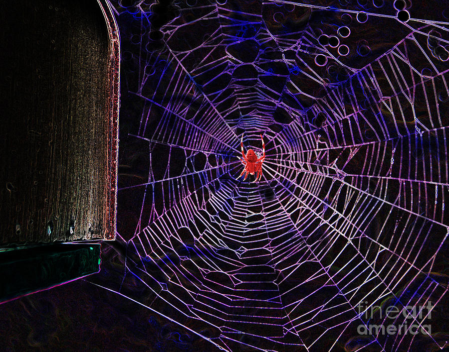 Blood Red Halloween Spider Web Digital Art  - Blood Red Halloween Spider Web Fine Art Print