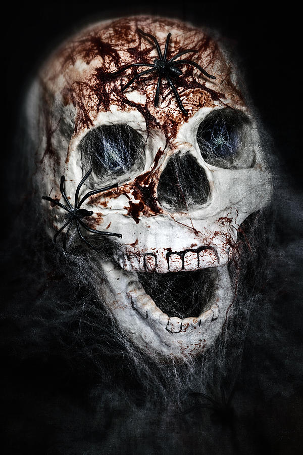 Bloody Skull Photograph