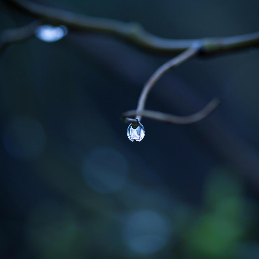 Square Photograph - Blue Drop by Photography by Gordana Adamovic Mladenovic