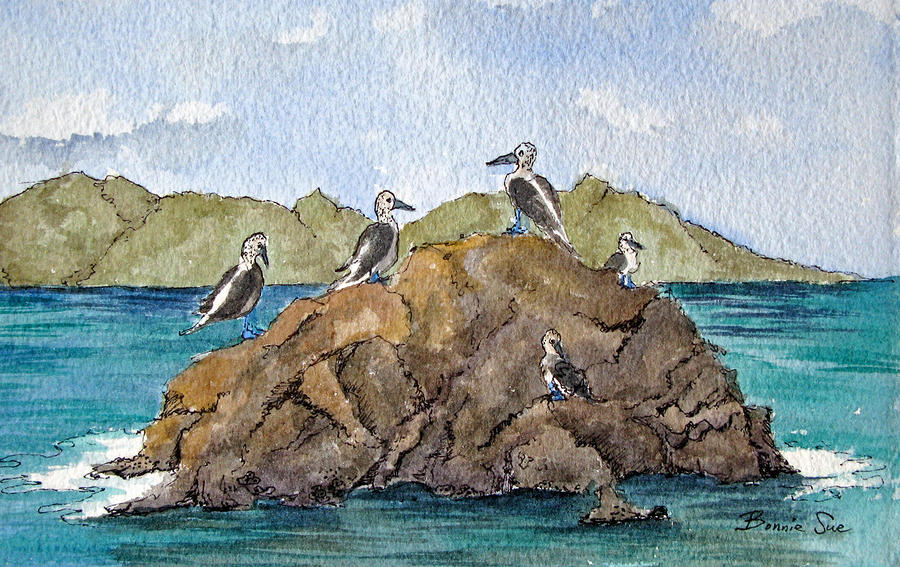 Blue Footed Boobies In Galapagos Painting