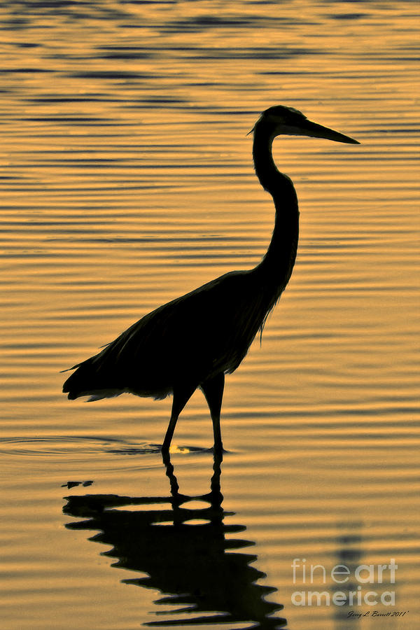 - blue-heron-silhouette-jerry-l-barrett