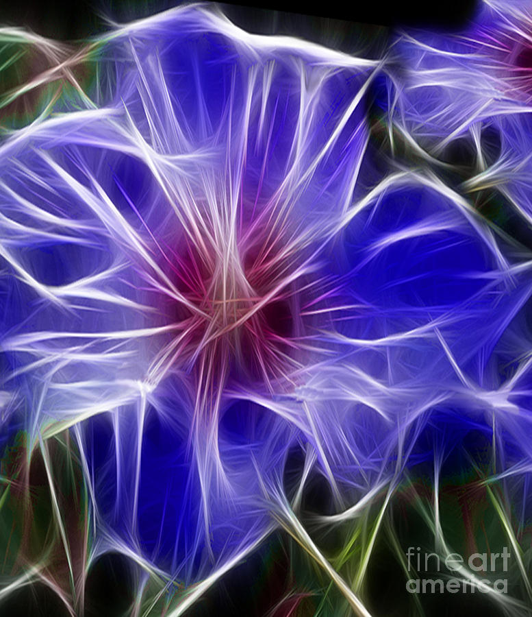 Blue Hibiscus Fractal Panel 3 Digital Art  - Blue Hibiscus Fractal Panel 3 Fine Art Print