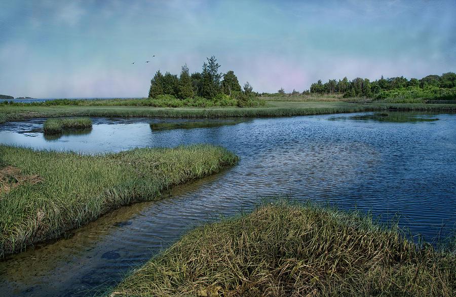 Seascape Photograph - Blue Lagoon by Robin-lee Vieira