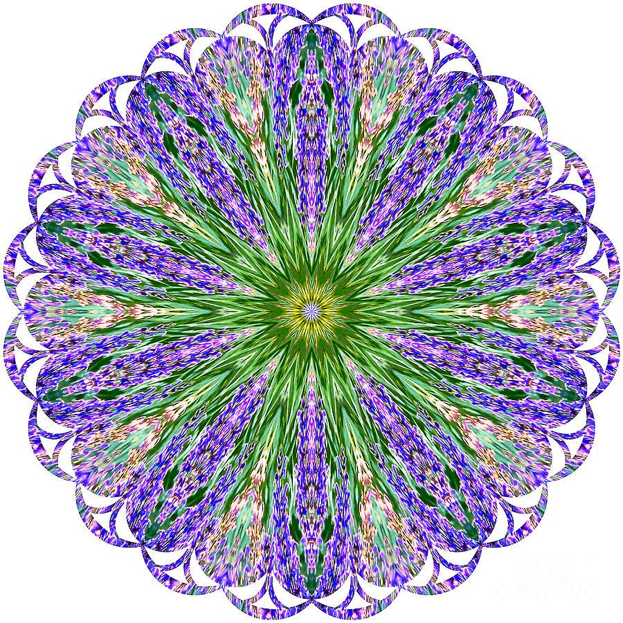Blue Lavender Floral Kaleidoscope Photograph