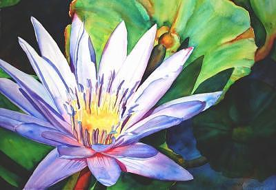 blue-lily-rene-lynch-a5207.jpg