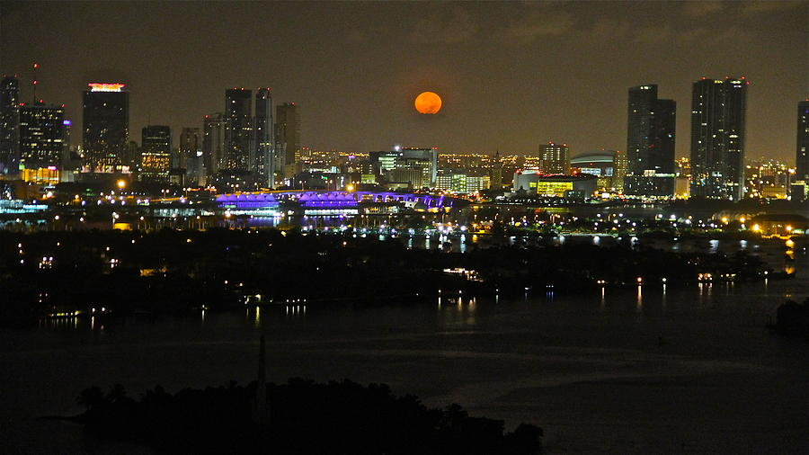 Blue Moon Over Miami Pyrography  - Blue Moon Over Miami Fine Art Print