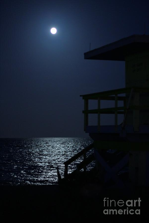 Blue Moon Photograph