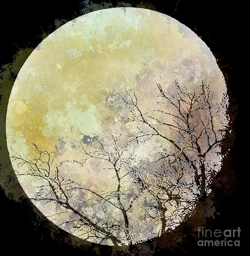 Blue Moon Rising Photograph  - Blue Moon Rising Fine Art Print