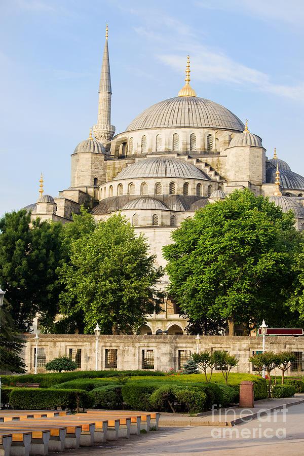 Blue Mosque Photograph