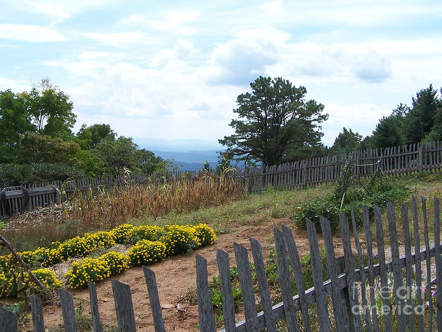 Blue Ridge Garden Photograph  - Blue Ridge Garden Fine Art Print