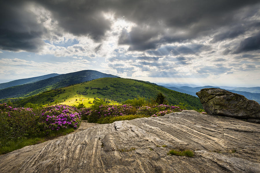 Blue Ridge Mountains Landscape - Roan Mountain Appalachian Trail Nc Tn Photograph  - Blue Ridge Mountains Landscape - Roan Mountain Appalachian Trail Nc Tn Fine Art Print
