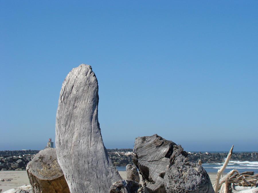Blue Sky Coastal Landscape Driftwood Rock Pier Photograph