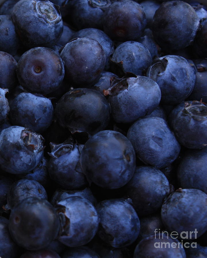 Blueberries Close-up - Vertical Photograph