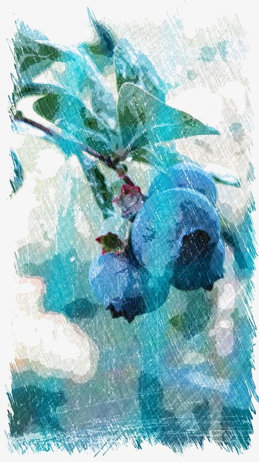 Blueberries Digital Art  - Blueberries Fine Art Print