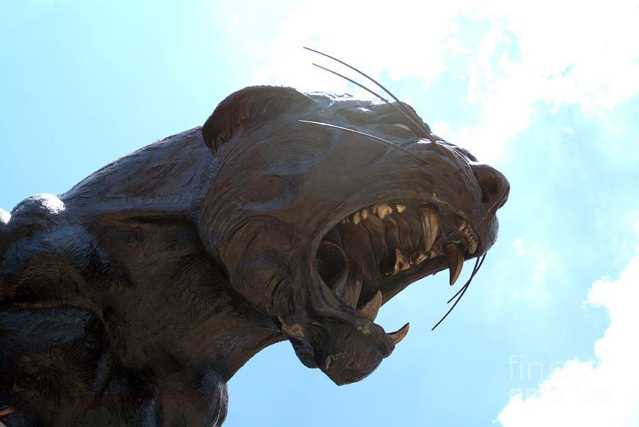 Bank Of America Stadium Panther Statue Photograph - Boa Stadium Panther by Clear Sky Images