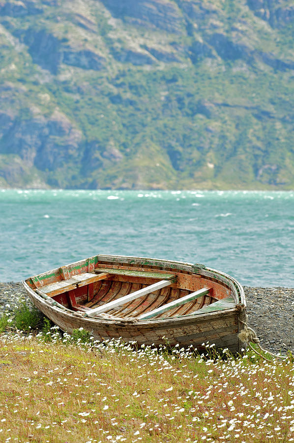 Boat And Wild Flowers By Sea Photograph