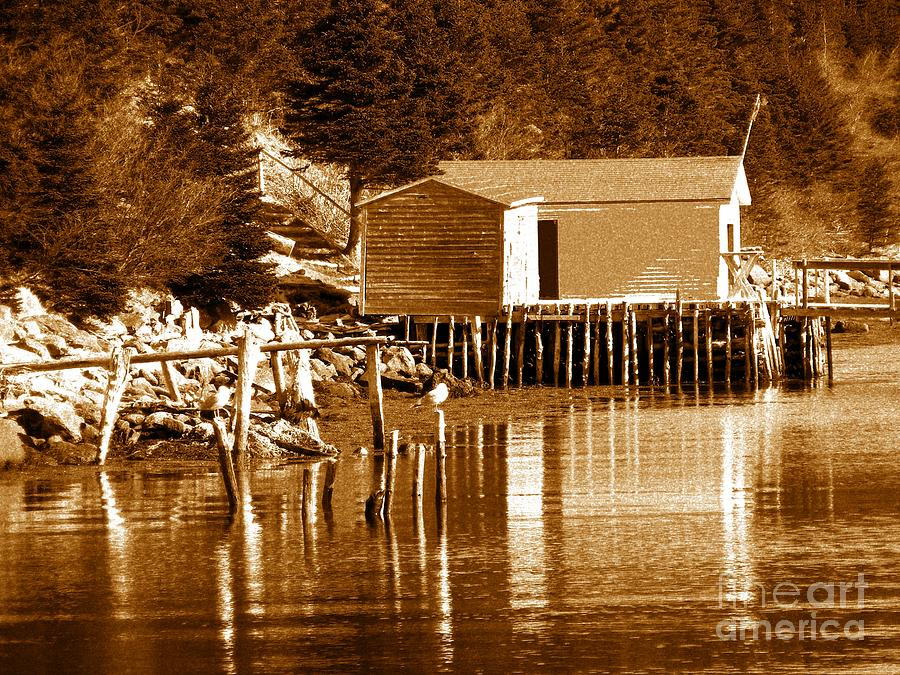 Boat House Photograph