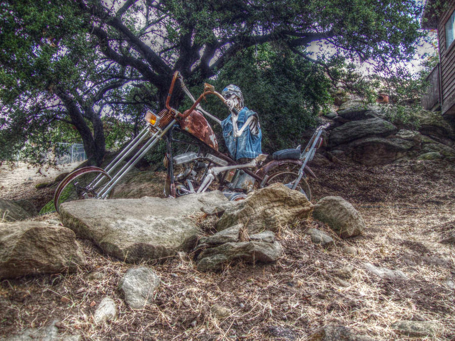 Bone Rattling Ride Photograph