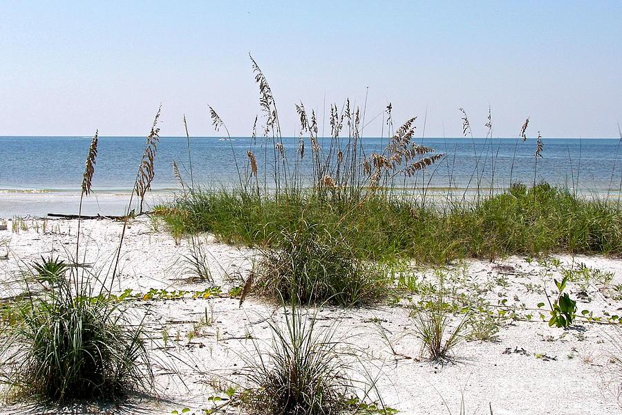 Florida Photograph - Bonita Beach by Carol  Bradley