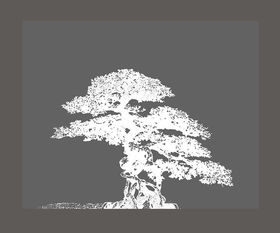 Bonsai I Photograph  - Bonsai I Fine Art Print