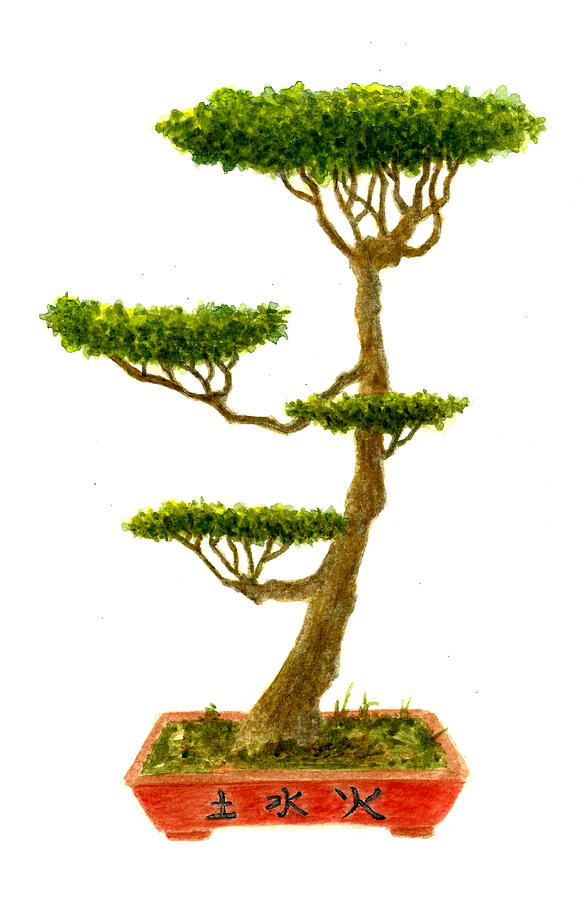 Bonsai Tree Paintings for Sale - Bonsai Tree Art