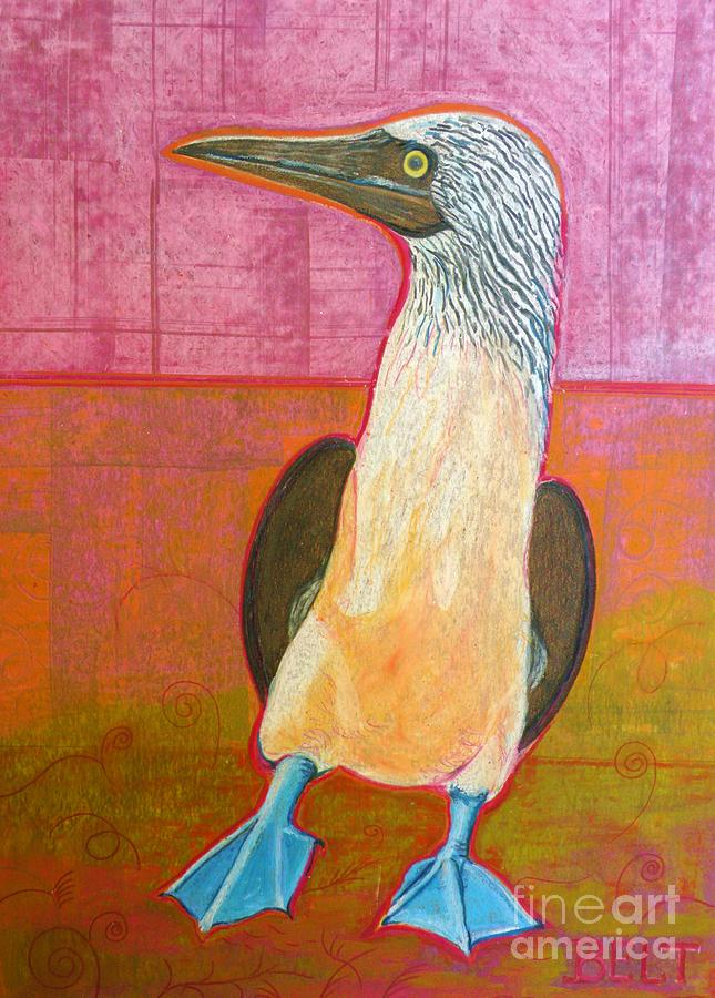 Booby Bird Painting  - Booby Bird Fine Art Print
