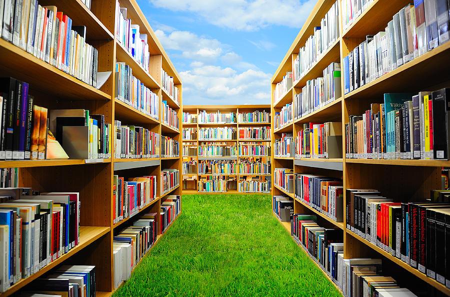 Book Garden Photograph