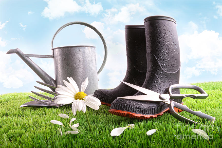 Boots With Watering Can And Daisy In Grass  Photograph  - Boots With Watering Can And Daisy In Grass  Fine Art Print