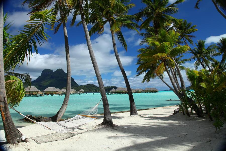 Bora Bora Beach Hammock Photograph