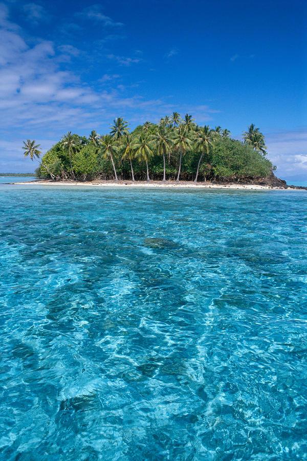 Bora Bora, Motu Photograph