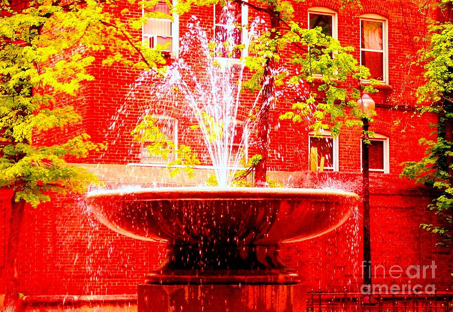 Boston Photograph - Boston Red by Ann Johndro-Collins