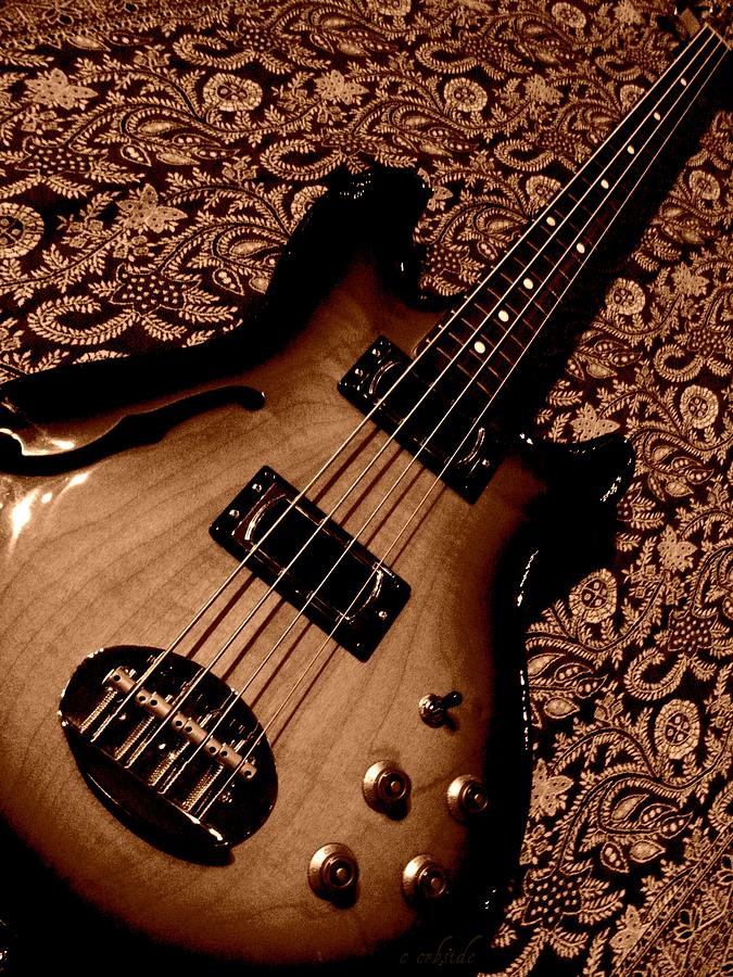 Bass Photograph - Botanical Bass by Chris Berry