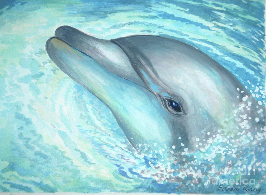 Bottlenose Dolphin Paint Color