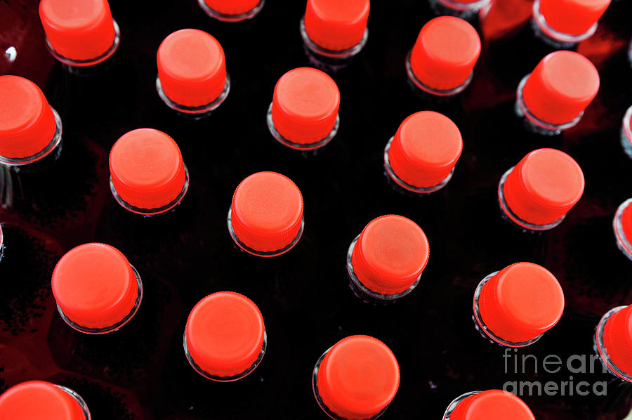 Bottles Red Caps Photograph  - Bottles Red Caps Fine Art Print
