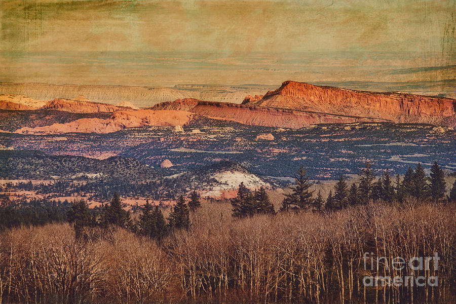 Boulder Mountain Summit Overlook Photograph  - Boulder Mountain Summit Overlook Fine Art Print