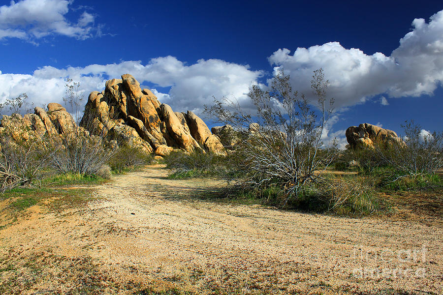 Boulders At Apple Valley Photograph