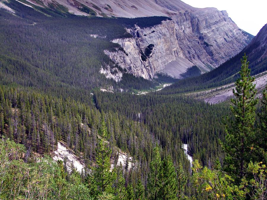 Bow River Valley Photograph