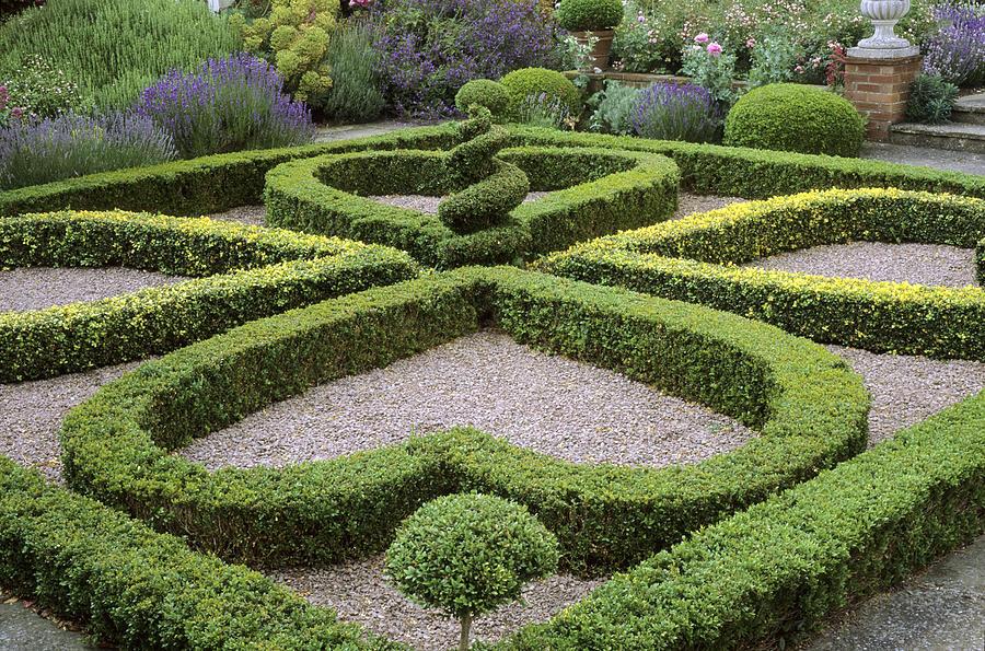 Parterre Garden Design images