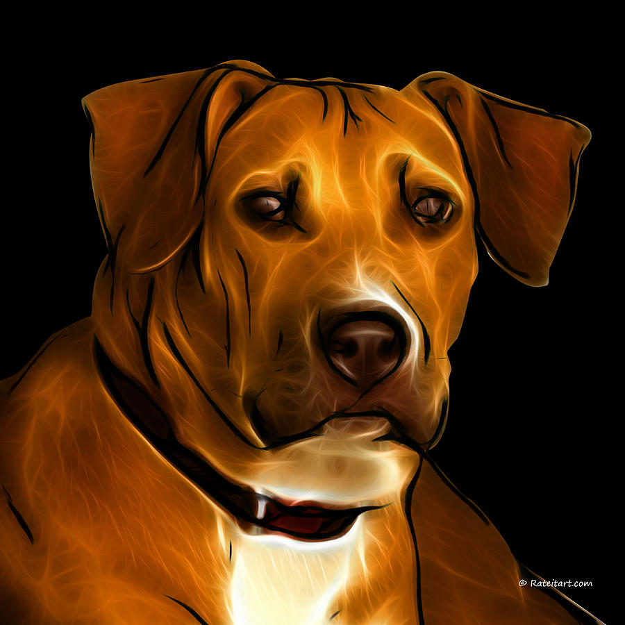 Boxer Pitbull Mix Pop Art - Orange Digital Art