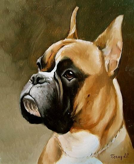 Boxer Portrait Painting