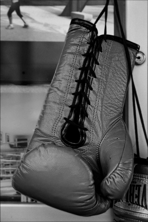 Boxing Glove Photograph  - Boxing Glove Fine Art Print