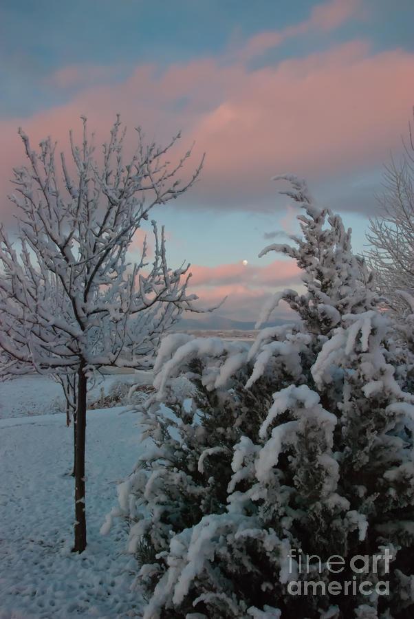 Boyd Lake Photograph - Boyd Lake Winter Moonset by Harry Strharsky