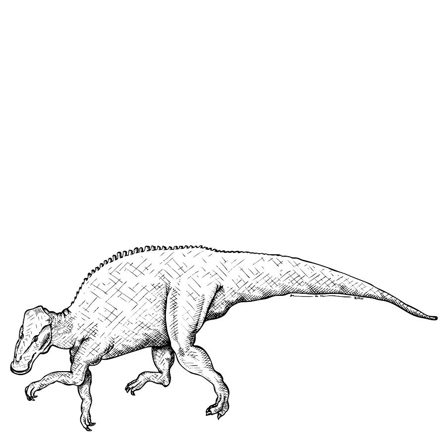 Cartoon Drawing - Brachylophosaurus - Dinosaur by Karl Addison