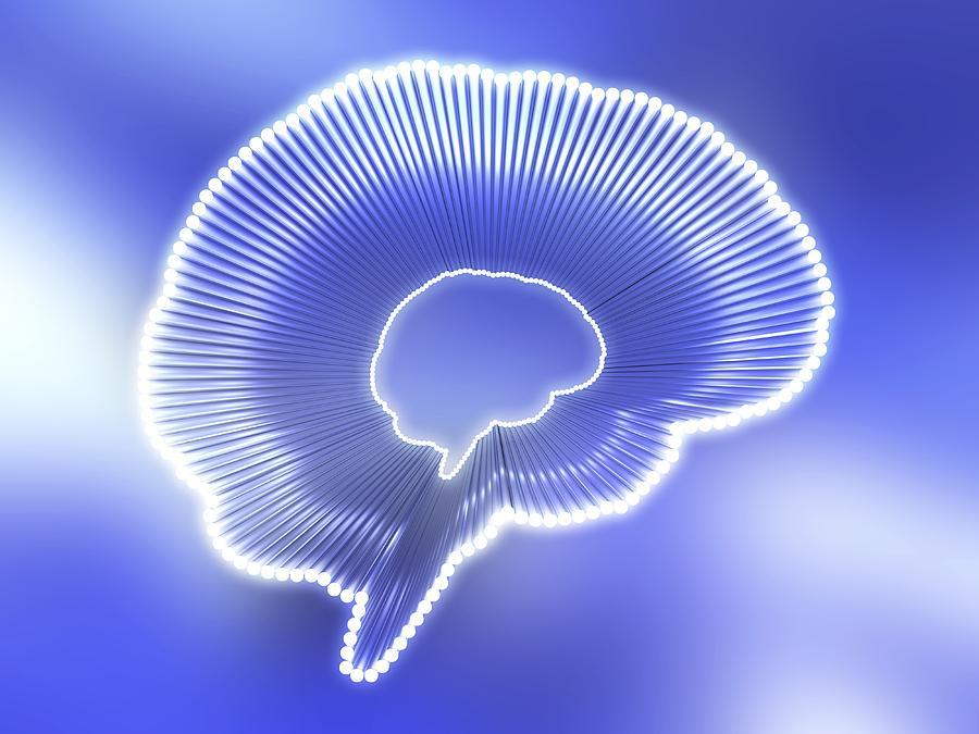 Brain Doping Photograph - Brain Outline, Artwork by Pasieka