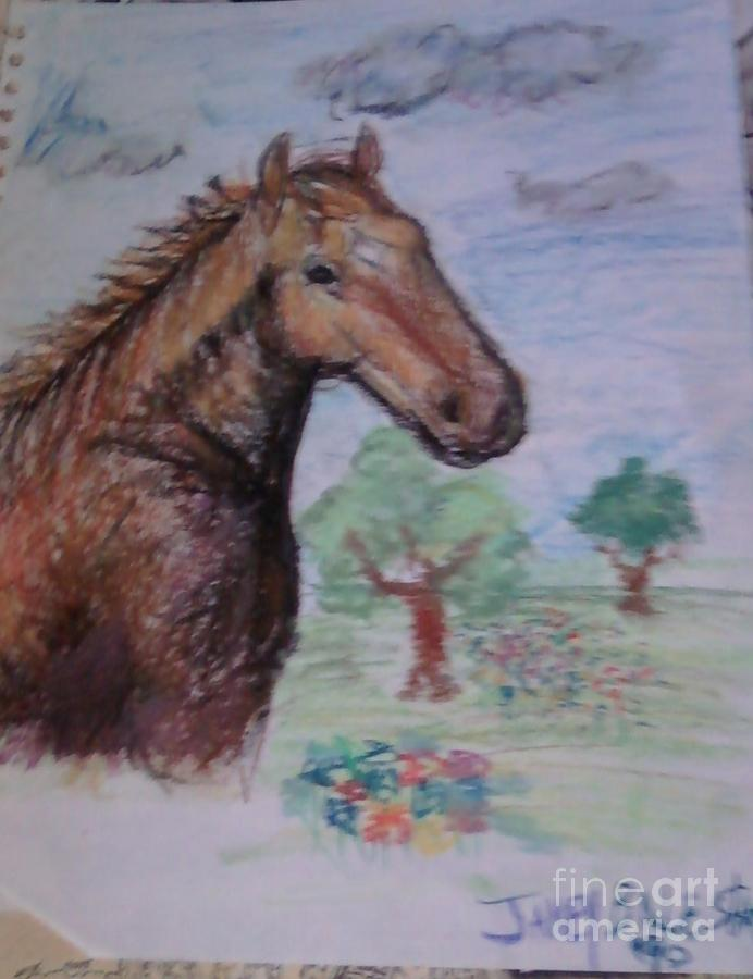 Brandy The Horse Drawing  - Brandy The Horse Fine Art Print