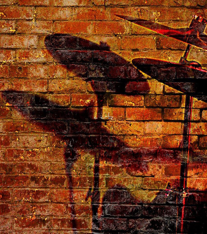 Brassy Shadow Photograph