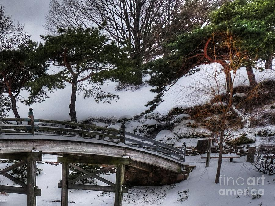 Bridge At Botanical Garden Photograph  - Bridge At Botanical Garden Fine Art Print