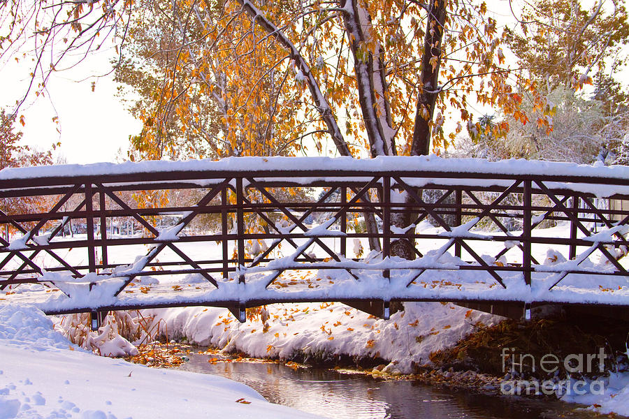 Bridge Over Icy Waters Photograph  - Bridge Over Icy Waters Fine Art Print